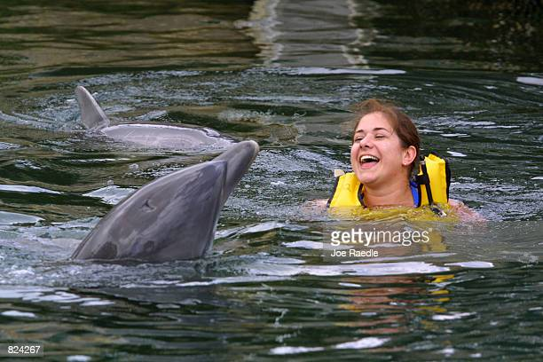 Sara Lotto laughs as she swims with two bottlenose dolphins during the structured swim May 4 2001 at the Dolphins Plus marine mammal research and...