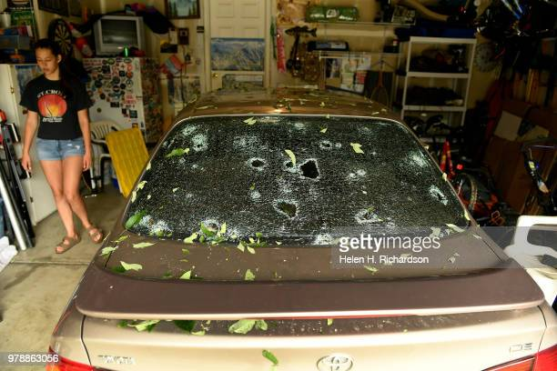 Hail Damage Car >> World S Best Hail Damage Car Stock Pictures Photos And