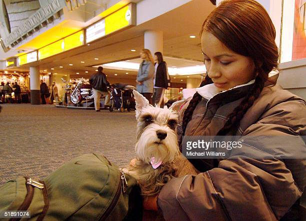 Sara Roig trys to sleep while her dog Princess keeps watch as she waits for her flight out of Columbus International Airport December 23 2004 in...