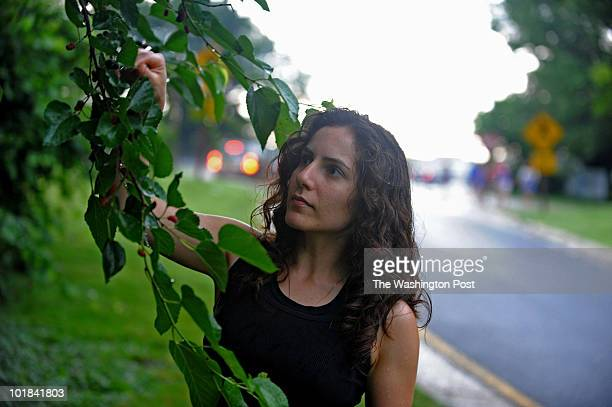 ROSSLYN VA JUNE 3 Sara Shokravi picks mulberries next to the Key Bridge in Rosslyn on June 3 2010