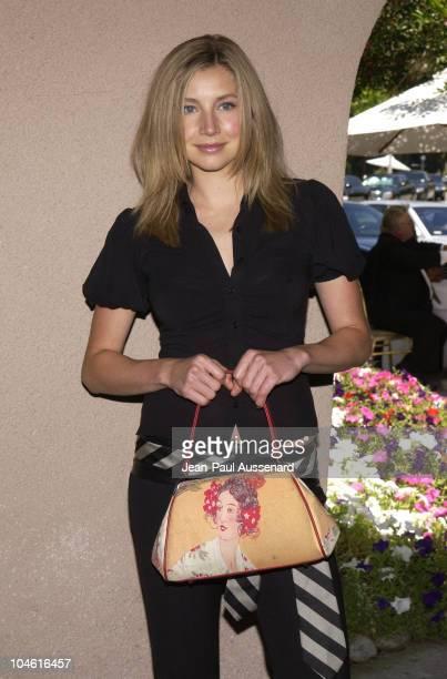 Sarah Chalke during NBC Summer 2002 Press Tour - Day 2 at Ritz Carlton Hotel in Pasadena, California, United States.