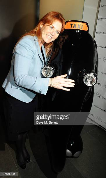 Sarah Ferguson the Duchess of York attends the launch of The Elephant Parade on March 23 2010 in London England