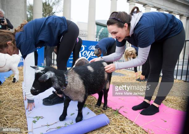 Sarah Fournier take part in a session of goat yoga to stretch and celebrate as the 95th Royal Agricultural Winter Fair trots into Toronto