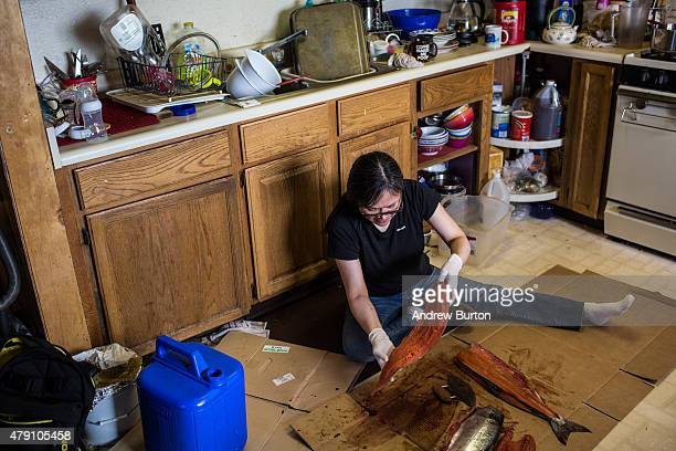 Sarah Kashatok cleans freshly caught salmon given to her as a gift from a friend on the floor of her kitchen on June 29 2015 in Newtok Alaska Newtok...