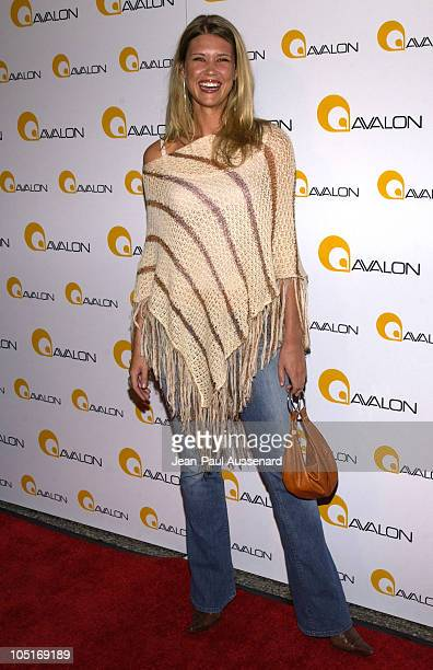 Sarah Lancaster during Avalon Hollywood Grand Opening Arrivals at Avalon in Hollywood California United States