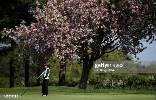 Sarah Mardani tends the flag during round one of the RA Girls U16 Amateur Championship at Fulford Golf Club on April 26 2019 in York England