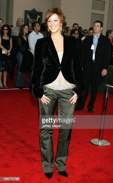 Sarah Mclachlan during 33rd Annual American Music Awards Arrivals at Shrine Auditorium in Los Angeles California United States