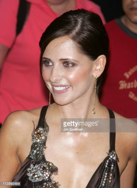 Sarah Michelle Gellar during 2005 CFDA Fashion Awards Outside Arrivals at New York Public Library in New York City New York United States