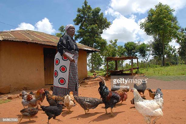 Sarah Obama Onyango the paternal grandmother of US Democratic presidentelect Barack Obama poses outside her home in Kogelo western Kenya on Wednesday...