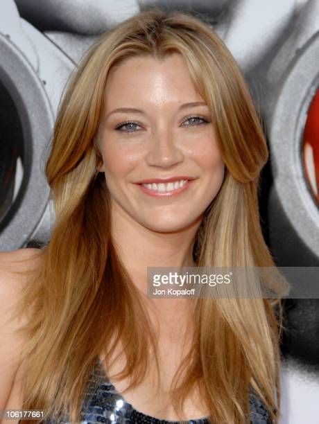 Sarah Roemer during Disturbia Los Angeles Premiere Arrivals at Grauman's Chinese Theater in Hollywood California United States