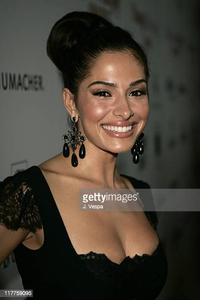 Sarah Shahi during Movieline Hollywood Life's Hollywood Style Awards Red Carpet and Cocktail Party at Pacific Design Center in West Hollywood...