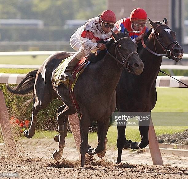 Sarava and Medaglia d'Oro race toward the finish in the 134th Belmont Stakes 08 June 2002 in Elmont NY Sarava went on to win the race AFP PHOTO/Stan...