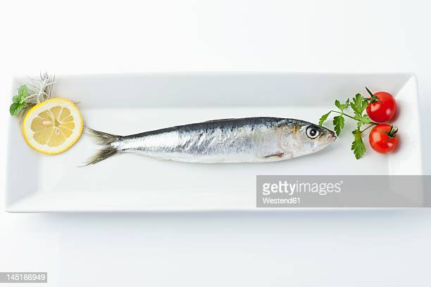 Sardine with lemon and tomato in plate