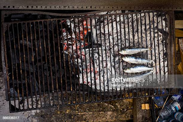Sardines baking on barbeque grill