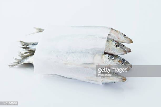 sardines in wax paper on white background - eingewickelt stock-fotos und bilder