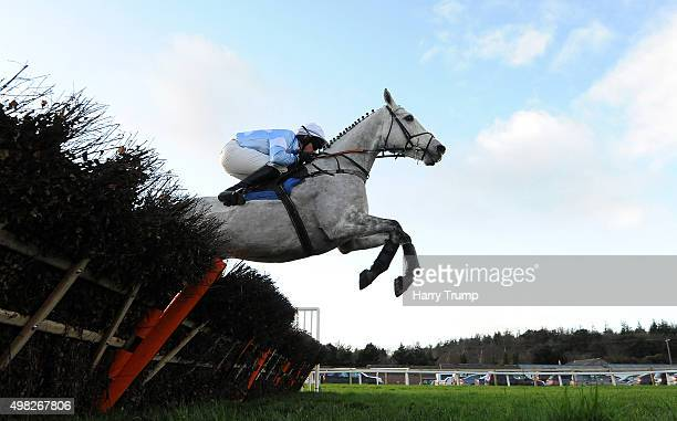 Sarenice ridden by Conor O'Farrell jumps during the Higos Insurance Services Exeter Handicap Hurdle at Exeter Racecourse on November 22 2015 in...