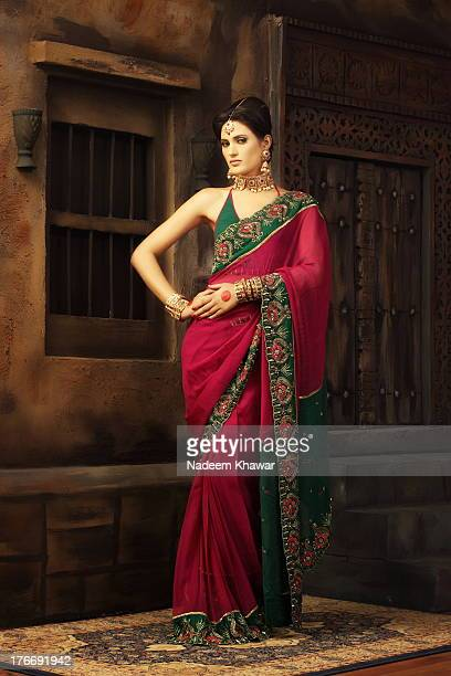 sari dress - sari stock pictures, royalty-free photos & images