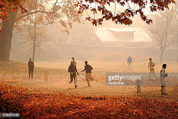 Sarrounded by majestic chinar trees children play cricket in mughal garden Nishat amid hazy conditions during autumn season in Kashmir
