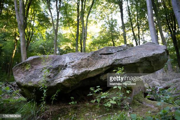Sarsen stone lies in the West Woods on July 30, 2020 in Marlborough, England. Archaeologists have discovered that the sarsen stones used for the...