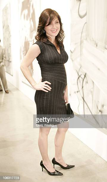 Sasha Alexander during Christopher Wool Opening Reception at Gagosian Gallery at Gagosian Gallery in Beverly Hills California United States
