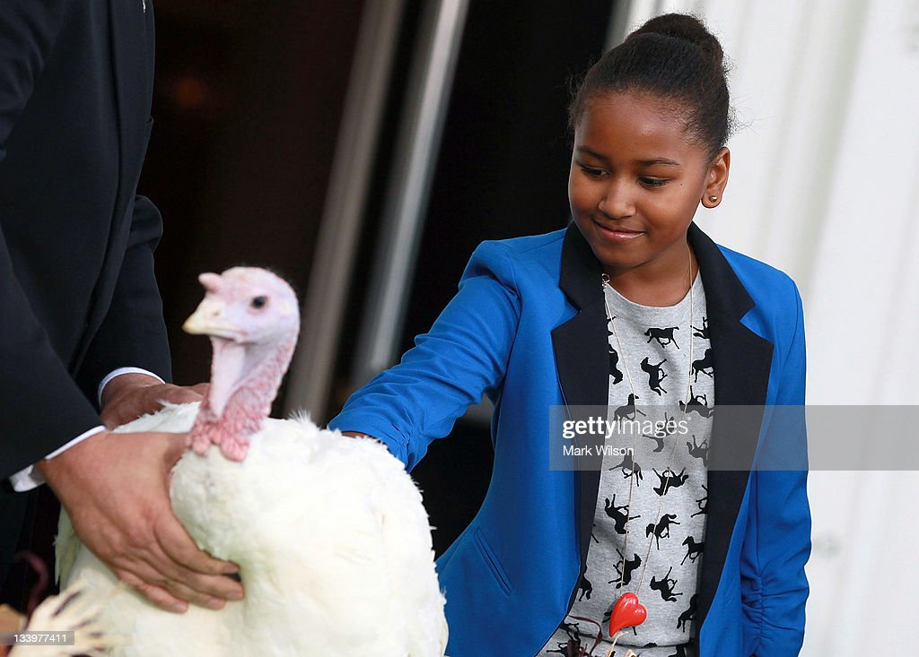 Sasha Obama pets a turkey named 'Liberty' after her father, U.S. President Barack Obama pardoned it at the White House November 23, 2011 in Washington, DC. The Presidential pardon of a turkey has been a long time Thanksgiving tradition that dates back to the Harry Truman administration.