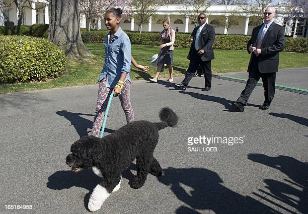 Sasha Obama US President Barack Obama's daughter walks their dog Bo during the White House Easter Egg Roll on the South Lawn of the White House in...