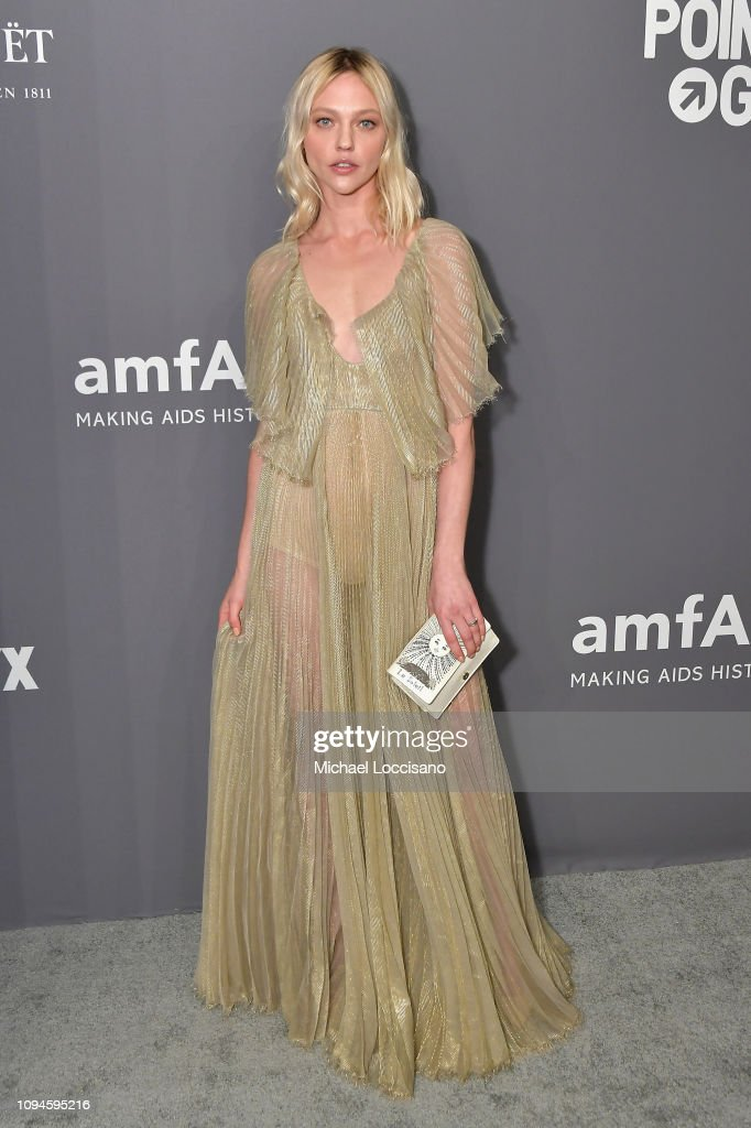 amfAR New York Gala 2019 - Arrivals : News Photo