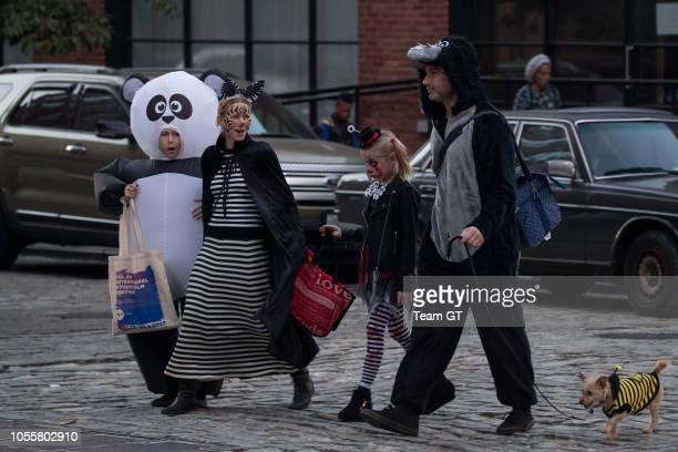 Sasha Schreiber Naomi Watts Kai Schreiber and Liev Schreiber are seen on October 31 2018 in New York City