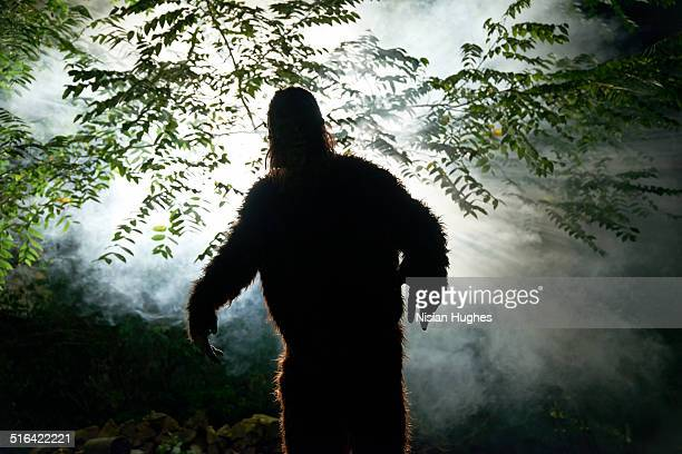 sasquatch or big foot in forest - big foot stock photos and pictures