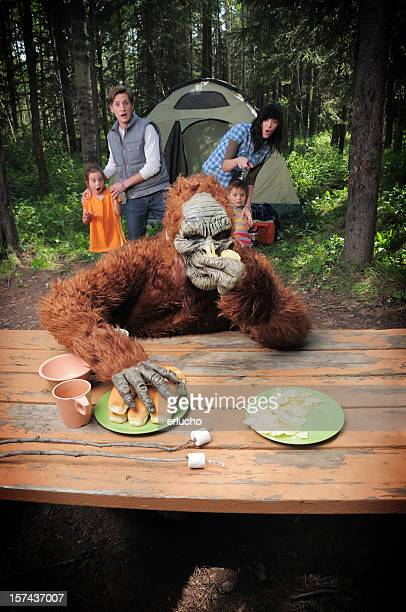 sasquatch - bigfoot stock pictures, royalty-free photos & images