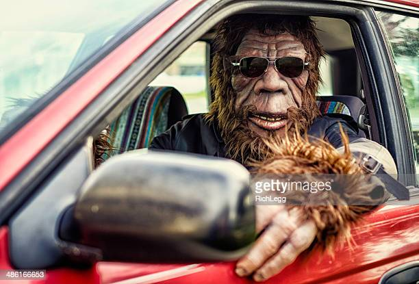 sasquatch road trip - primate stock pictures, royalty-free photos & images