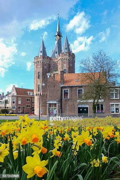 sassenpoort during spring in zwolle, overijssel, the netherlands - zwolle stock photos and pictures