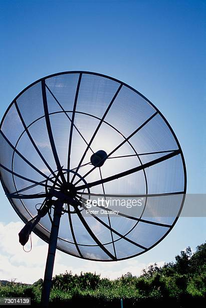 Satellite dish, low angle view