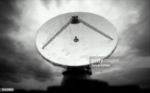 Satellite dish (B&W)