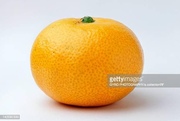 satsuma mandarin - ミカン ストックフォトと画像