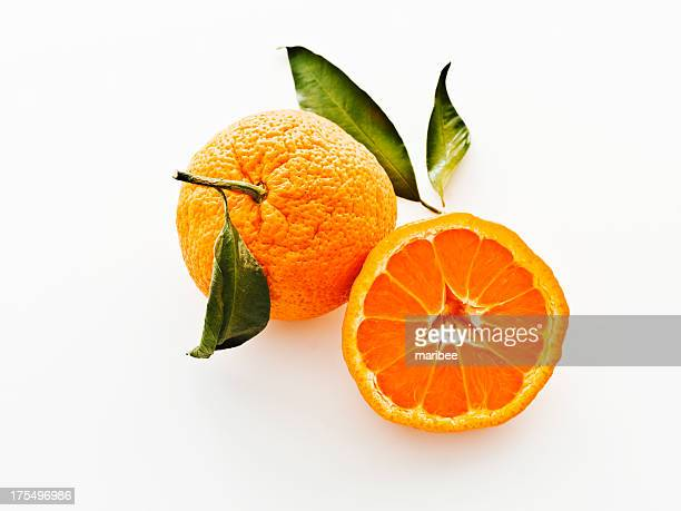 satsuma mandarins with leaves