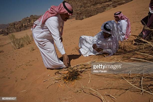 Saudi Arabia, Hisma desert