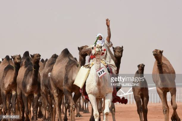 A Saudi man waves to spectators as he leads camels during a beauty contest as part of the annual King Abdulaziz Camel Festival in Rumah some 160...