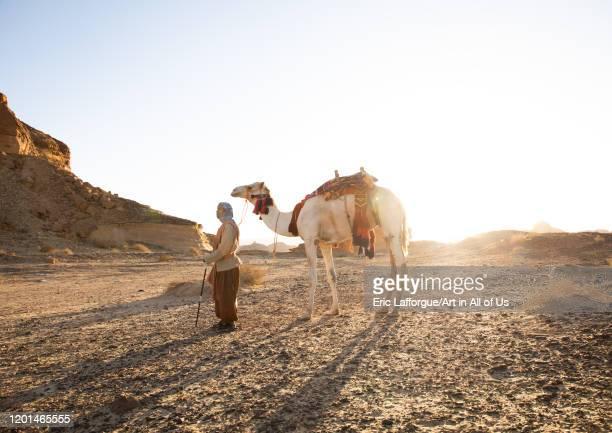 Saudi man with a decorated camel in Madain Saleh, Al Madinah Province, Alula, Saudi Arabia on December 27, 2019 in Alula, Saudi Arabia.