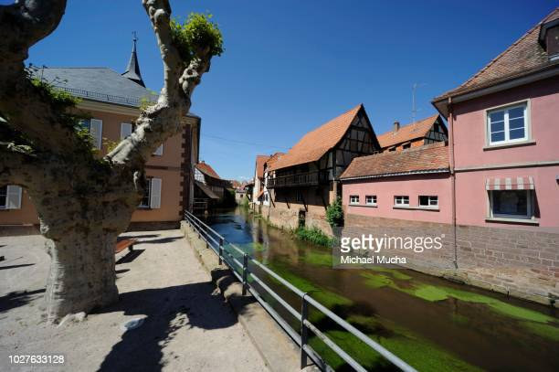 sauer river, historic centre of woerth, alsace, france - michael mucha stock-fotos und bilder