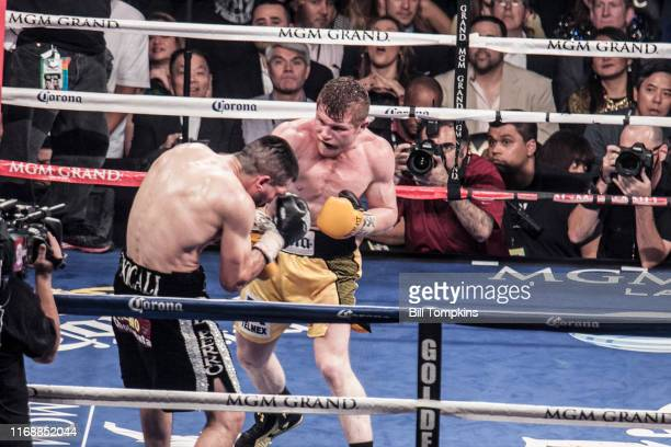 Saul Alvarez defeats Alfredo Angulo by TKO in the 10th round in their Super Welterweight boxing match at The MGM Hotel on March 8, 2014 in Las Vegas....