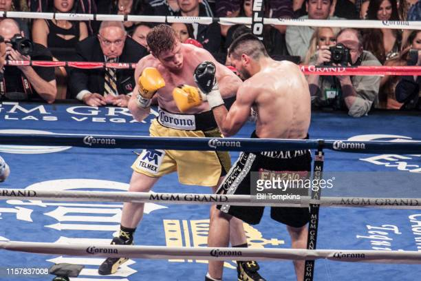 Saul Alvarez defeatsAlfredo Angulo by TKO in the 10th round in their Super Welterweight boxing match at The MGM Hotel on March 8 2014 in Las Vegas...