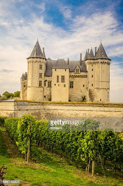 saumur, france - loire valley stock pictures, royalty-free photos & images
