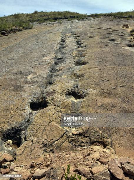 Sauropods theropods and ankylosaurus footprints from the Cretaceos period are seen at the Toro Toro National Park where about 3500 footprints were...