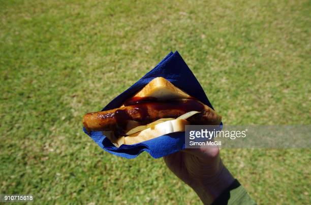 sausage sizzle sandwich with fried onion and bbq sauce in a blue paper napkin held in a man's hand in a park - australian capital territory stockfoto's en -beelden
