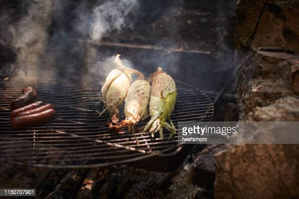 sausages and corn cooking on campfire - heshphoto imagens e fotografias de stock