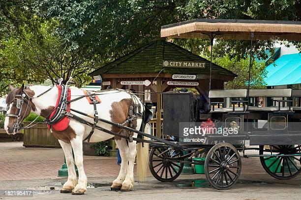 Savanah GA: Horsecart for Tourists at City Market