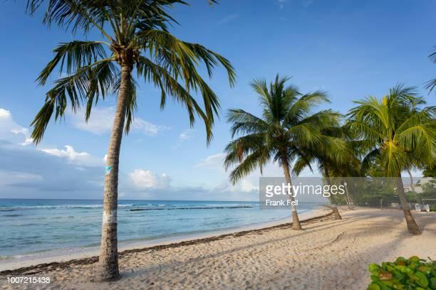 savannah beach, savannah, bridgetown, christ church, barbados, west indies, caribbean, central america - bridgetown barbados stock pictures, royalty-free photos & images
