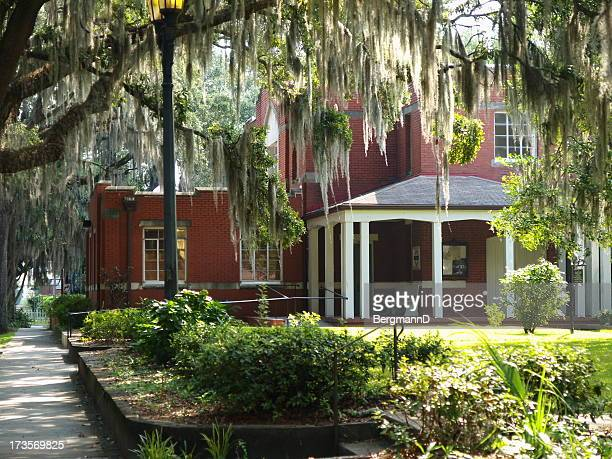 savannah scene - spanish moss stock pictures, royalty-free photos & images