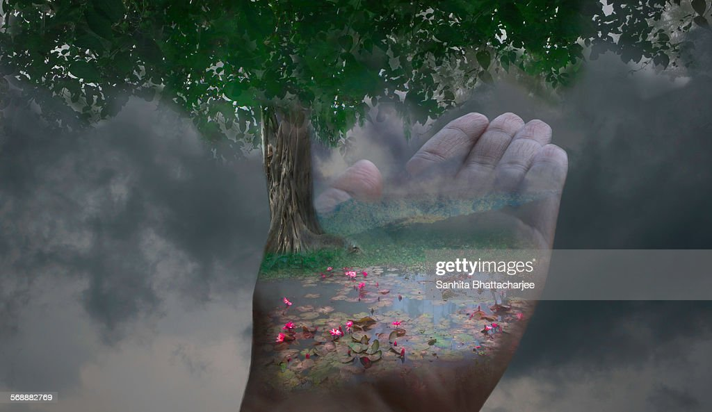 Save Our Nature : Stock Photo